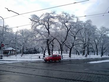 Praha 24.1.11