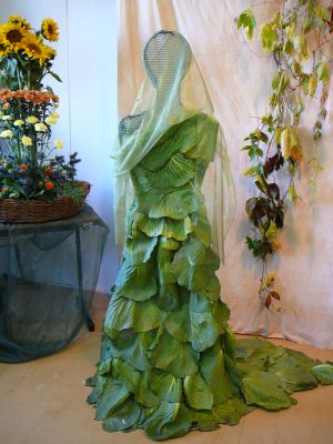 KK-šaty ze zelí
