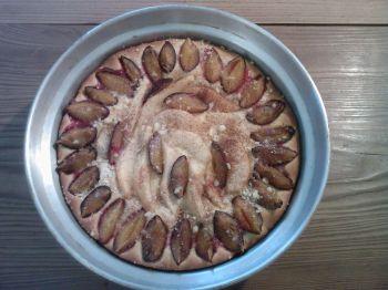 koláč švehru II