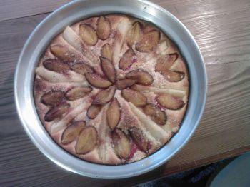 koláč švehru IV