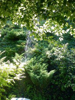 2010-vodopád II