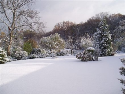 zima064